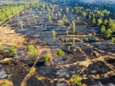 Inloopbijeenkomsten Peelbrand: 'De natuur daar moet je niet tegen vechten'