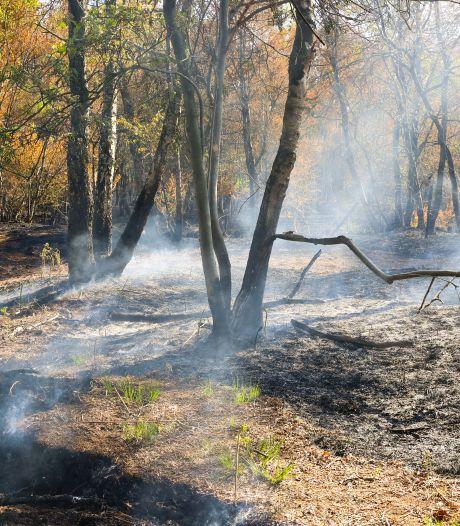Peelbewoners zijn angstig na de grote brand: het is hier niet meer veilig