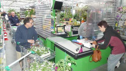 Klusmicroben kriebelen nog net iets harder dan groene vingers: Stormloop op doe-het-zelfcentra, gezellige drukte bij tuin- en plantenwinkels