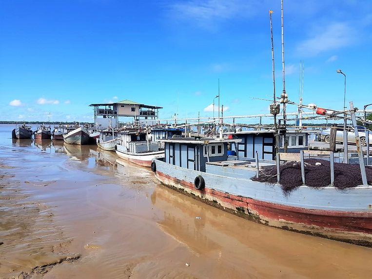 Een steiger in een haven in Noord-Suriname. Beeld Zoë Deceuninck