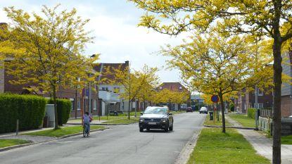 Stad plant inwoners die langer in Ninove wonen meer voorrang te geven bij toewijzing sociale woningen