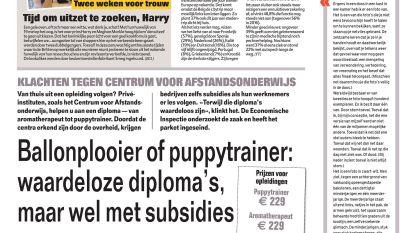 Ballonplooier of puppytrainer: waardeloze diploma's, maar wel met subsidies