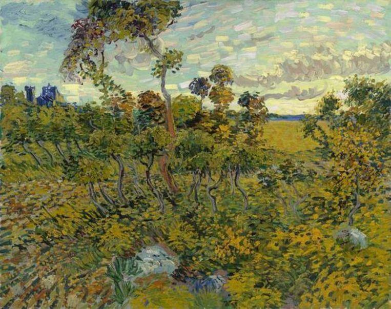De nieuwe Van Gogh. Beeld Van Gogh Museum