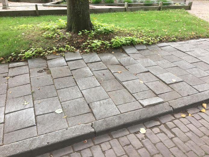 Losliggende stoeptegels in de Baai, Henegouwenlaan en Doornikstraat in Etten-Leur zijn omwonenden en de lokale VVD-fractie een doorn in het oog. De partij vindt het zelfs 'onaanvaardbaar' dat de gemeente wacht met ingrijpen.