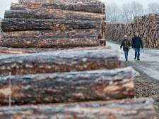 Duo betrapt op stelen van boomstammetjes