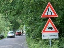 Dispuut om dassenoversteek Zeeweg loopt op: provincie dreigt Harderwijk met dwangsom