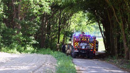 Bosbrandje langs autosnelweg snel geblust