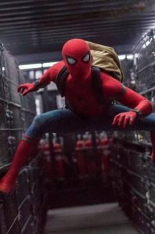 Ils se laissent mordre par une veuve noire pour devenir Spider-Man: mauvaise idée