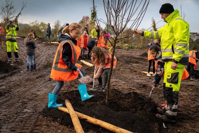 Kinderen van groep 7 en 8 van de Mauritiusschool planten bomen in de Rhedense Zuidflank.