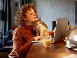 Thuiswerk blijkt minder geschikt voor mentaal zware taken