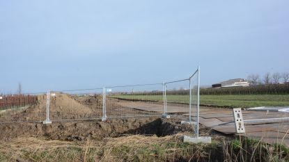 Werken aan windmolenpark stilgelegd na klacht van Polderbestuur