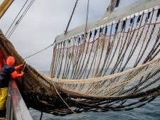Vergunning pulsvissers nog eenmaal verlengd