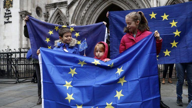 Anti-Brexiteers staan voor de ingang van het Royal Courts of Justice in Londen. Beeld AFP