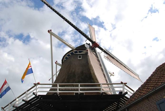 Vooral de wieken en het draaiwerk van korenmolen De Zwaluw in Hasselt zijn dringen aan restauratie toe.