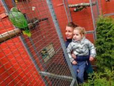 Acties om Zoo Veldhoven door de coronacrisis te helpen