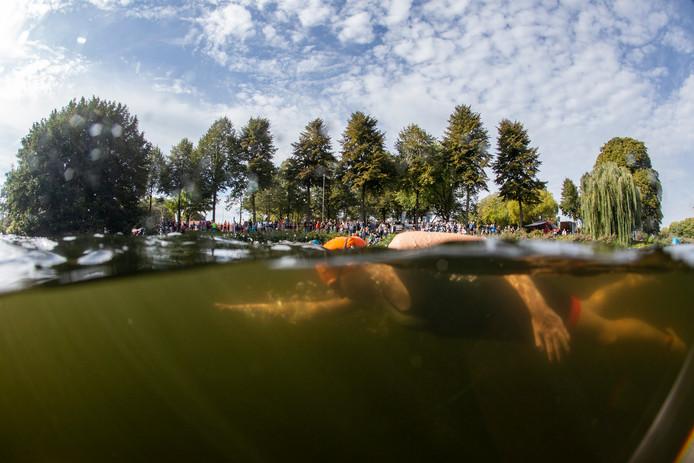 De 4e Editie van de Triathlon van Zutphen. Zwemmers in de Vispoortgracht.