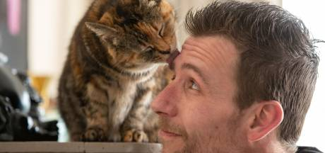 Vermiste poes Vlekje na vier jaar terug dankzij tv-serie: 'Ik herkende haar in een flits'