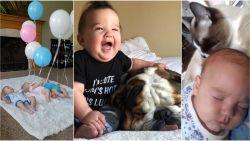 Overdosis schattigheid met deze drie babyvideo's