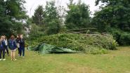 Chiro Parcifal houdt inzamelactie nadat omgevallen boom patrouilletent volledig vernielt