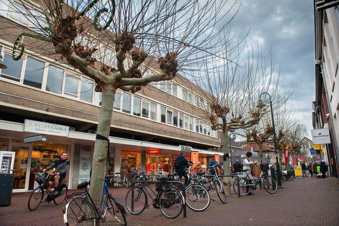 Den Bosch. Bomen in de Rechterstraat in Boxtel die worden gekapt.