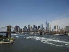 Werkbezoek van biebbazen aan New York valt verkeerd op Utrechtse Heuvelrug<br><br>