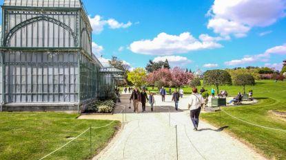 Serres Kasteel van Laken lokken ruim 113.000 bezoekers