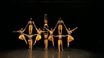 Van menselijke piramides tot grote vuurshow: Circus- en straattheaterfestival De Donderdagen blijft groeien met deze zomer 19 voorstellingen