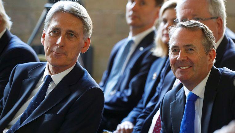 De Britse ministers Philip Hammond (l) en Liam Fox.