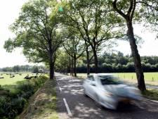 Politie snapt in vlot tempo vier snelheidsduivels op toeristische weg in Dalfsen: bestuurders zijn rijbewijs kwijt
