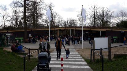 Dierenpark Planckendael sluit dan toch de deuren: bezoekers moeten park verlaten