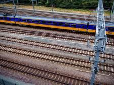 Bramenplukkers leggen treinverkeer lam tussen Zwolle en Groningen