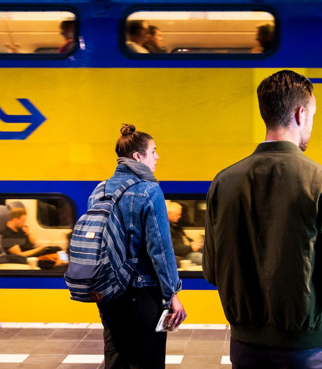 Geit op het spoor bij Vught gevangen, treinen tussen Den Bosch en Eindhoven rijden weer