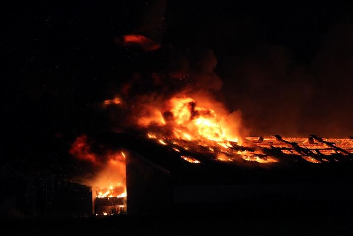 De brandende kippenschuren in Buurmalsen.
