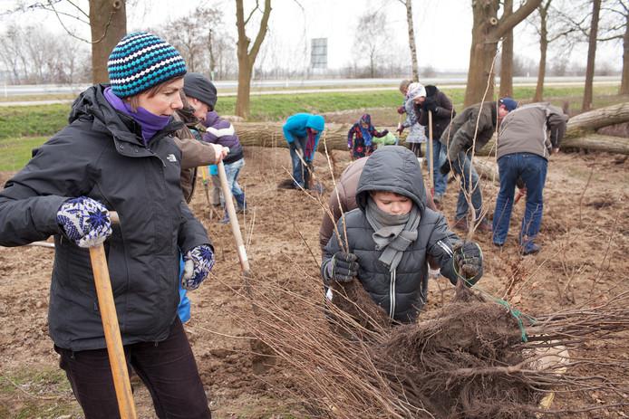 In maart wil Nijmegen 4.000 bomen in de stad erbij planten.