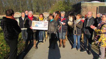 Cheque van 600 euro voor The Healing Horse