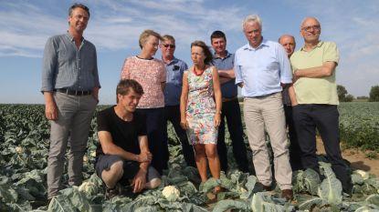 Boeren hopen op compensatie rampenfonds