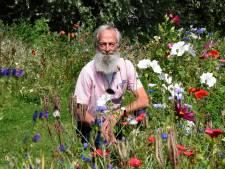 Het is bewezen: bloemenbermen in Woerden hebben deze belangrijke functie