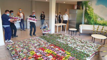 Gemeente schenkt 1.000 plantjes aan ziekenhuispersoneel