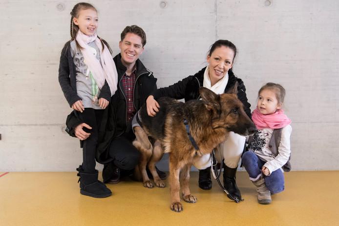 Een Duitse herdershond die afgelopen augustus uit haar huis in West-Duitsland was weggelopen, is afgelopen week honderden kilometers verderop, weer opgedoken. Rapunzel werd in slechte staat op een Zwitserse snelweg gevonden. Een ambulance stuitte 's-nachts op de verfomfaaide hond aan de kant van een snelweg buiten Zürich, ongeveer 400 kilometer van haar Duitse huis. In het nabij gelegen dierenziekenhuis werd de hond weer opgelapt. Door de chip in haar nek begreep men dat het Rapunzel was, de 9-jarige Duitse herder die in augustus als vermist werd opgegeven in het Duitse Hösbach. Vandaag kon de familie weer herenigd worden met de verloren geraakte hond. Foto Ennio Leanza