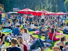 Festival Duizel in het Park stopt op hoogtepunt vanwege toenemende financiële risico's
