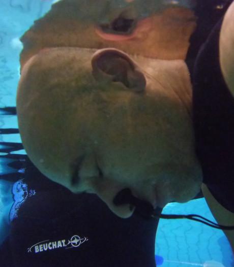 Ruim 5 minuten lang je adem inhouden: deze freedivers deinzen er niet voor terug