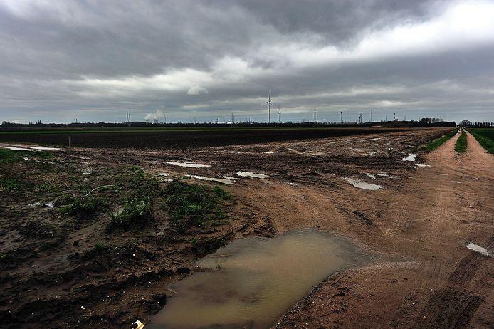 Bij de Kabeljauwbeek in de polders bij Ossendrecht wil Eneco een zonnepark aanleggen. De voorlopige vergunning is binnen. Het bedrijf bouwt daar al aan een windmolenpark met vijf turbines.