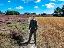 'Boerenakkers' op heide van Sallandse Heuvelrug moeten insecten lokken