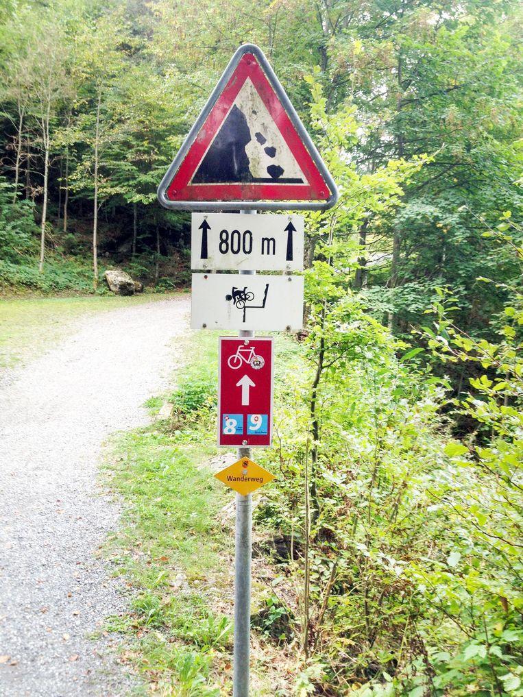Zwitserland kent 20 duizend kilometer met zorgvuldig bewegwijzerde fietspaden. Beeld null