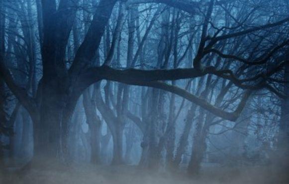 De gemeente en de heemkundige kring organiseren een geheimzinnige nachtdropping.