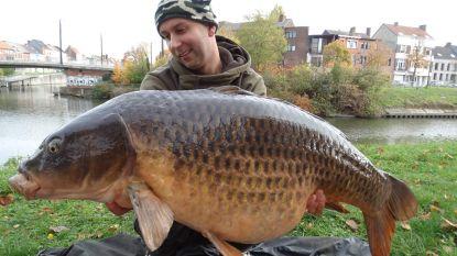 Gentse wateren zitten vol vis (en niet alleen kleine)