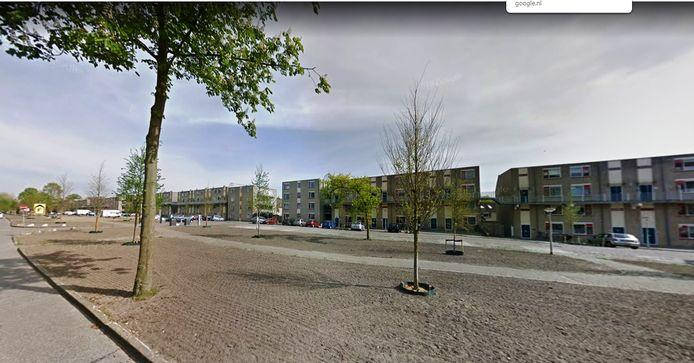 De nieuwe bomen van de Rijtuigweg op een opname van Streetview