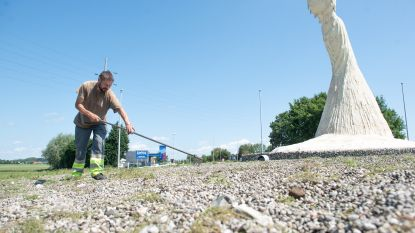 Stad schiet plots toch in actie: tuinaannemer haalt al het onkruid op rotonde in Eine rotonde weg