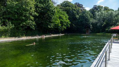 Hittegolf op komst: zwemvijver Boekenberg voert blokzwemmen in