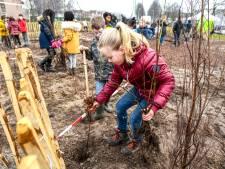 In het eerste Tiny Forest van Roosendaal heeft straks iedere leerling van De Kroevendonk zijn eigen boom